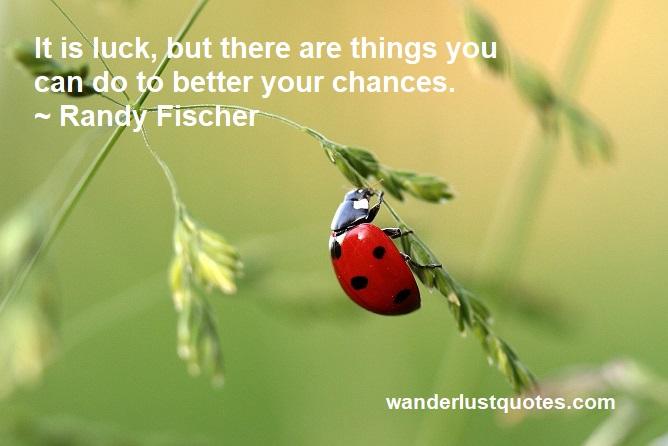 ladybug luck