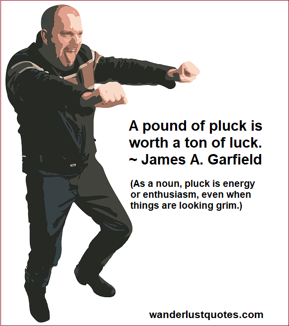pluck luck quotes